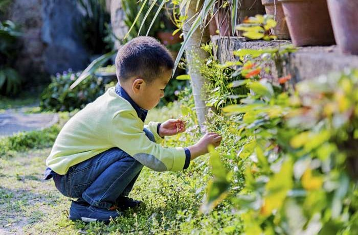 Little boy playing in the garden